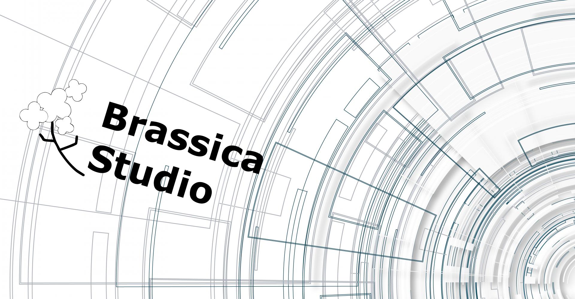 合同会社ブラシカスタジオ